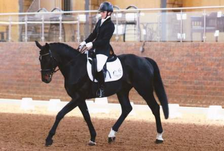 Dressage Ireland Finals Winter 2015